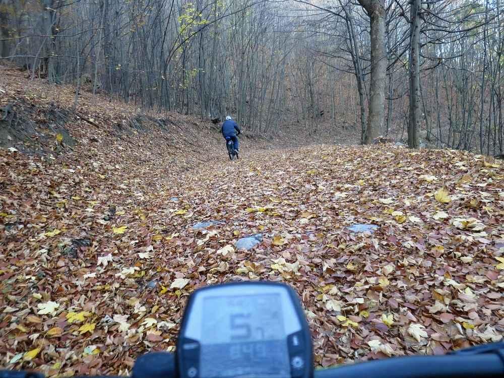Jesenné jazdenie elektrobikom v lese