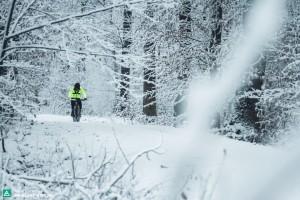 ebike winter